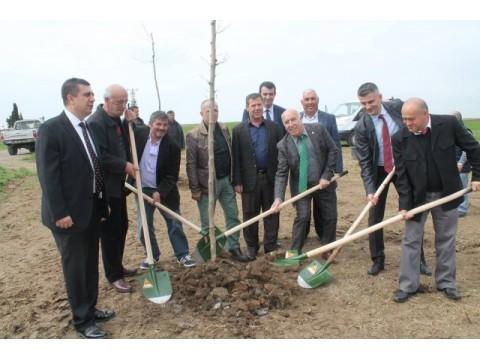 Her vatandaşın bir ağacı olacak