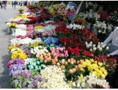marmara ereğlisi çiçekçi-denis çiçek
